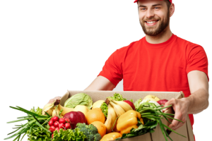 Grocery & Meal Delivery Websites